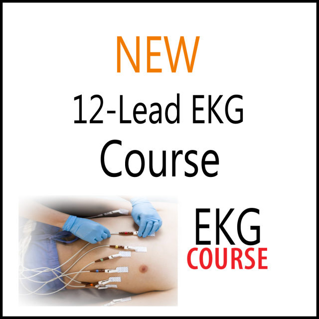 12 Lead EKG/ECG Course Book Included